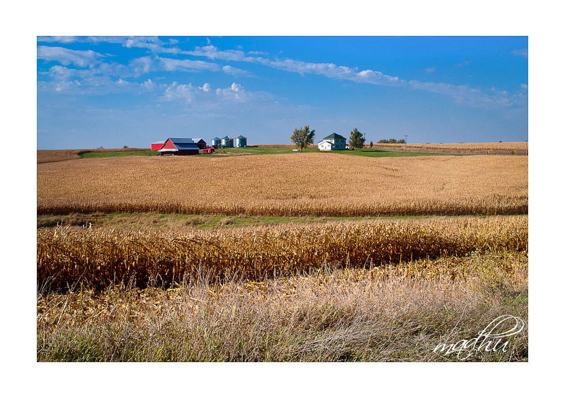 Iowa_farm-163b