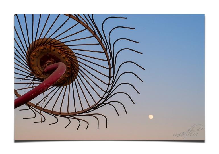 moon-rake-6998-b