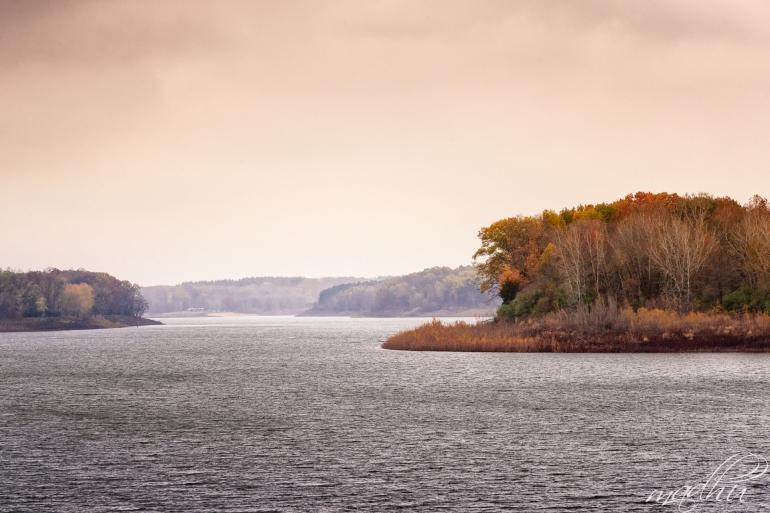 Foggy Lake Macbride_D8S5792-b